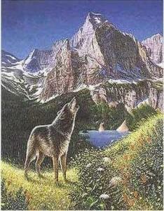 Четыре волка